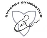 Synergy-Logo-150x122