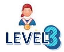 Level 3 AA