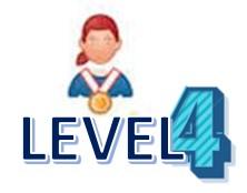 Level 4 AA