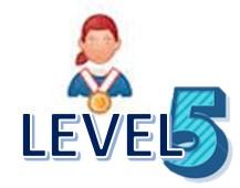 Level 5 AA