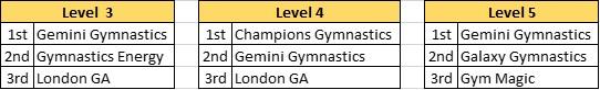 Level 3-5 Team Awards.emf